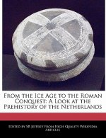 From the Ice Age to the Roman Conquest: A Look at the Prehistory of the Netherlands