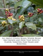 All about Coffee Beans: Where Beans Are Grown and How That Affects Flavor, Varieties, Fair-Trade and Roasting
