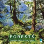 Forests - Green jewels of the earth (Wall Calendar 2017 300 × 300 mm Square)