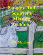 Scraggy-Tail Squirrel's Missing Walnuts