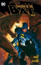 Shadow of the Bat Vol. 2
