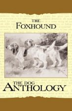 The Foxhound & Harrier - A Dog Anthology (A Vintage Dog Books Breed Classic)