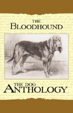 The Bloodhound - A Dog Anthology (A Vintage Dog Books Breed Classic)