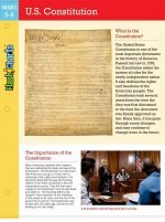 U.S. Constitution Flashcharts