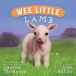 Wee Little Lamb