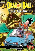 Dragon Ball, Volume 3: Into the Fire