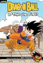 Dragon Ball Chapter Book, Volume 9: Is This the End?