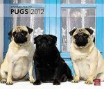 For the Love of Pugs Deluxe