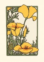 California Poppy, (Unboxed)