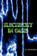 Electricity in Gases (High Voltage Physics Series)