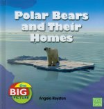Polar Bears and Their Homes
