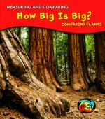How Big Is Big?: Comparing Plants