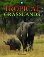 Tropical Grasslands
