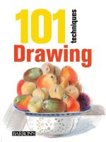 101 Techniques: Drawing