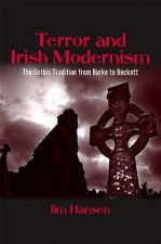 Terror and Irish Modernism: The Gothic Tradition from Burke to Beckett