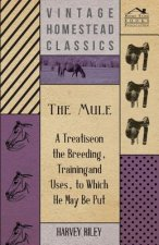 The Mule - A Treatise on the Breeding, Training and Uses, to Which He May Be Put