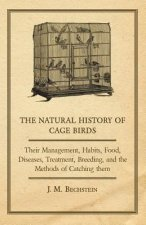 The Natural History of Cage Birds - Their Management, Habits, Food, Diseases, Treatment, Breeding, and the Methods of Catching them