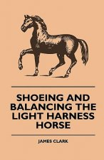Shoeing And Balancing The Light Harness Horse