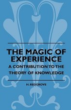 The Magic Of Experience - A Contribution To The Theory Of Knowledge
