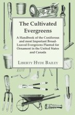 The Cultivated Evergreens - A Handbook of the Coniferous and most Important Broad-Leaved Evergreens Planted for Ornament in the United States and Cana