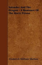 Salander And The Dragon - A Romance Of The Hartz Prison