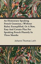 An Elementary Speaking French Grammar, (Without Rules) Exemplified, Or A New, Easy And Certain Plan For Speaking French Fluently In Three Months