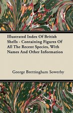 Illustrated Index Of British Shells - Containing Figures Of All The Recent Species, With Names And Other Information