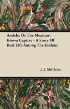 Andele, or the Mexican-Kiowa Captive - A Story of Real Life Among the Indians