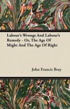 Labour's Wrongs And Labour's Remedy - Or, The Age Of Might And The Age Of Right