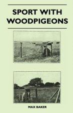 Sport With Woodpigeons