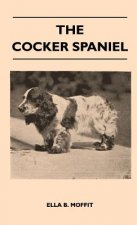 The Cocker Spaniel - Companion, Shooting Dog And Show Dog - Complete Information On History, Development, Characteristics, Standards For Field Trial A