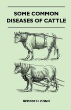 Some Common Diseases Of Cattle