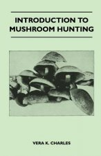 Introduction to Mushroom Hunting