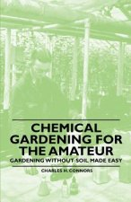 Chemical Gardening for the Amateur - Gardening Without Soil Made Easy