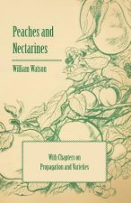 Peaches and Nectarines - With Chapters on Propagation and Varieties
