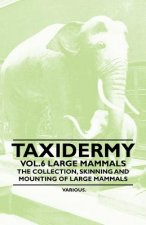 Taxidermy Vol.6 Large Mammals - The Collection, Skinning and Mounting of Large Mammals