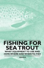 Fishing for Sea Trout - What Equipment to Use and How, Where and When to Fish