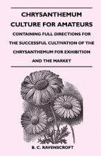 Chrysanthemum Culture for Amateurs