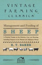 Management and Feeding of Sheep - A Practical Treatise on the Selection, Care, And Breeding, Including Chapters on the Diseases and Ailments of Sheep