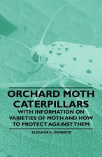 Orchard Moth Caterpillars - With Information on Varieties of Moth and How to Protect Against Them
