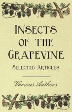 Insects of the Grapevine - Selected Articles
