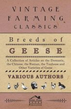Breeds of Geese - A Collection of Articles on the Domestic, the Chinese, the Roman, the Toulouse and Other Varieties of Geese