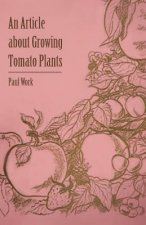 An Article about Growing Tomato Plants