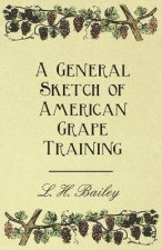 A General Sketch of American Grape Training