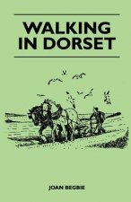 Walking in Dorset