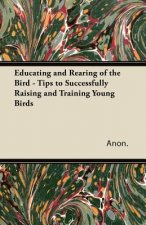 Educating and Rearing of the Bird - Tips to Successfully Raising and Training Young Birds