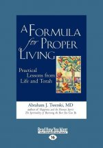 A Formula for Proper Living: Practical Lessons from Life and Torah (Large Print 16pt)