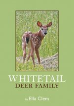 Whitetail Deer Family