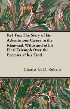 Red Fox; The Story of His Adventurous Career in the Ringwaak Wilds and of His Final Triumph Over the Enemies of His Kind