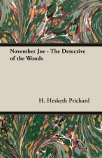 November Joe - The Detective of the Woods